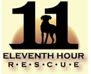 11th Hour Rescue