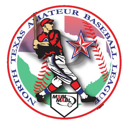 Amateur Baseball League 101