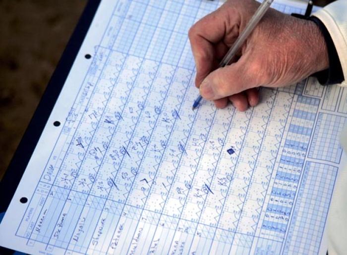 pitch count sheets peninsula baseball and softball association